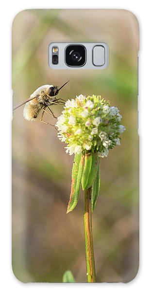 Bee Fly On A Wildflower Galaxy Case by Christopher L Thomley