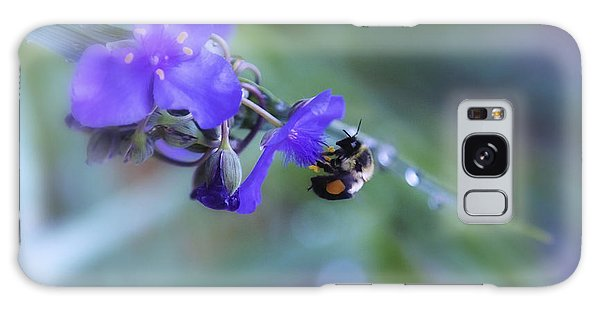 Bee Harmony Galaxy Case