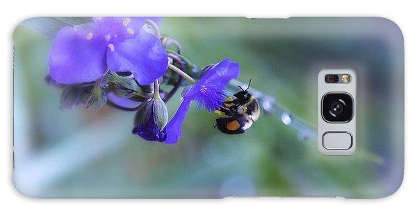 Bee Harmony Galaxy Case by Mary Lou Chmura
