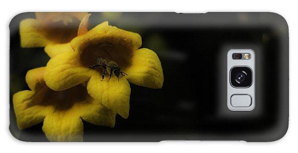 Bee In A Trumpet Galaxy Case