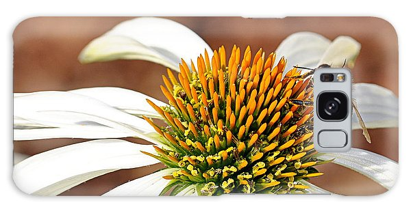 Galaxy Case featuring the photograph Bee In The Echinacea  by AJ Schibig