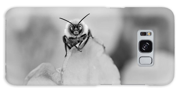 Bee Looking At Me Galaxy Case