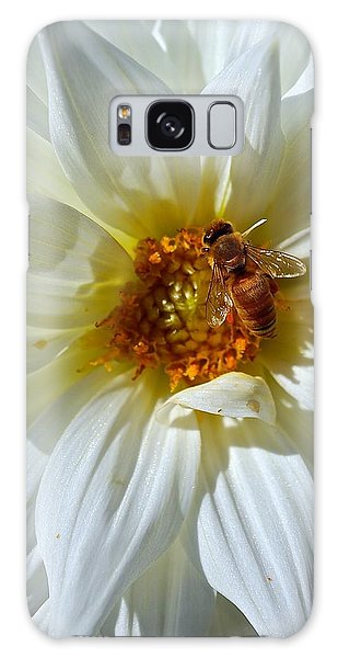Bee Nice Dahlia  Galaxy Case