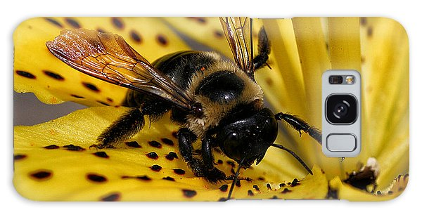 Bee On A Lily Galaxy Case