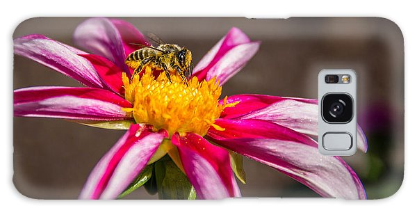 Bee On Dahlia Galaxy Case