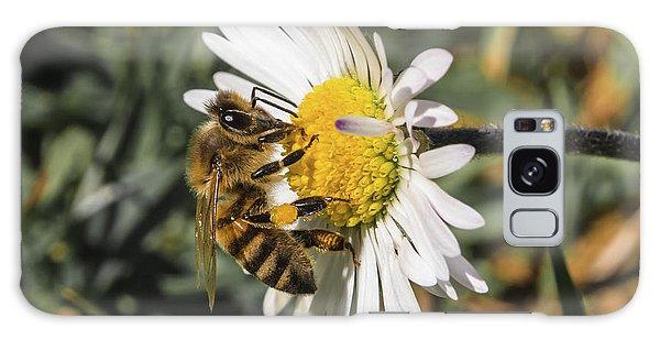 Bee On Flower Daisy Galaxy Case