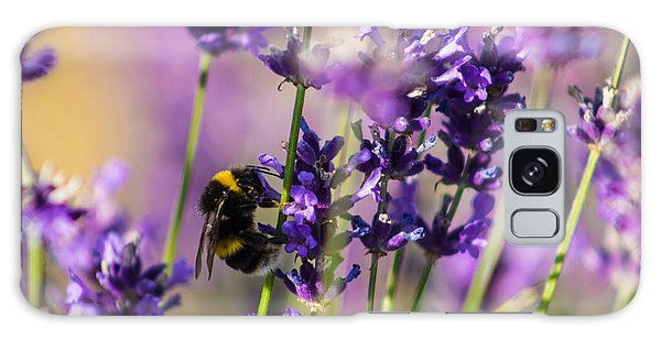 Bee On Lavender Galaxy Case