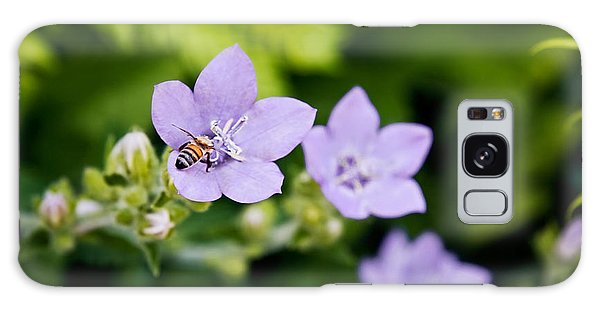 Bee On Lavender Flower Galaxy Case