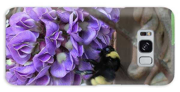 Bee On Native Wisteria Galaxy Case by Angela Annas