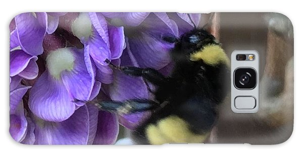 Bee On Native Wisteria I Galaxy Case by Angela Annas