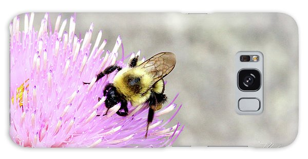 Bee On Pink Bull Thistle Galaxy Case