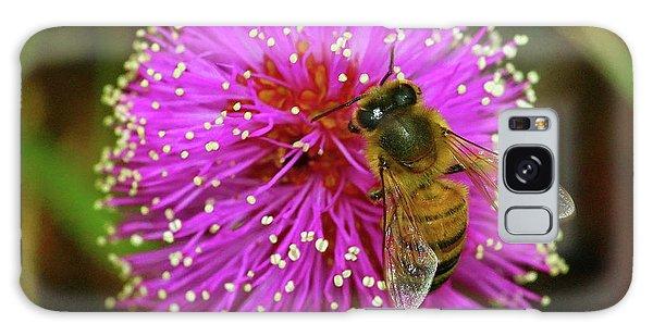 Bee On Puff Ball Galaxy Case
