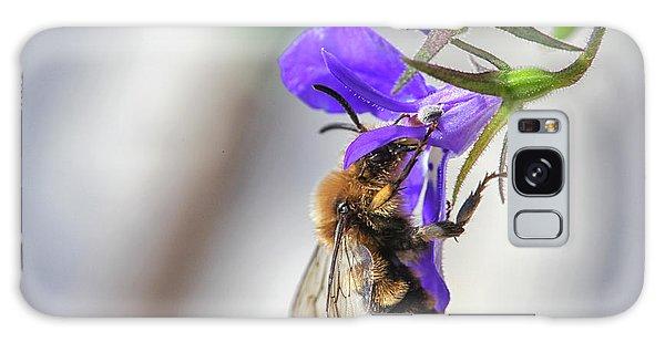 Bee On Purple Flower Galaxy Case