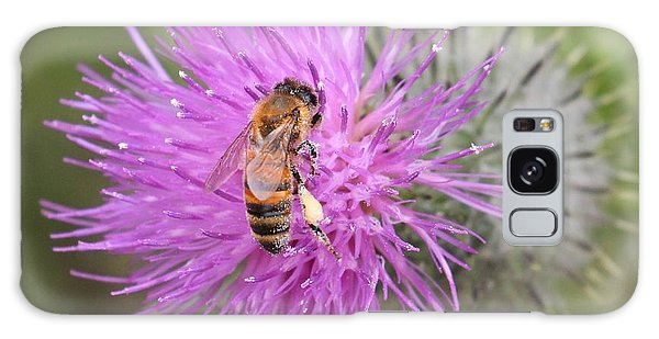 Bee On Purple Thistle Galaxy Case