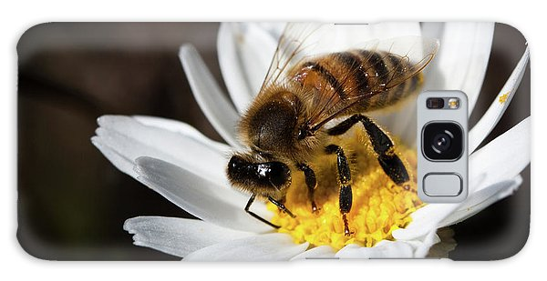 Bee On The Flower Galaxy Case