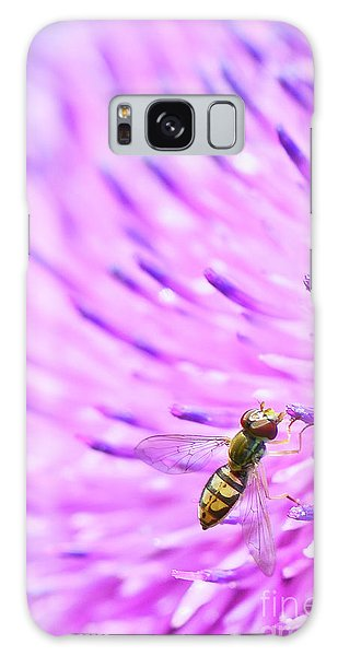 Sweat Bee On Thistle Galaxy Case