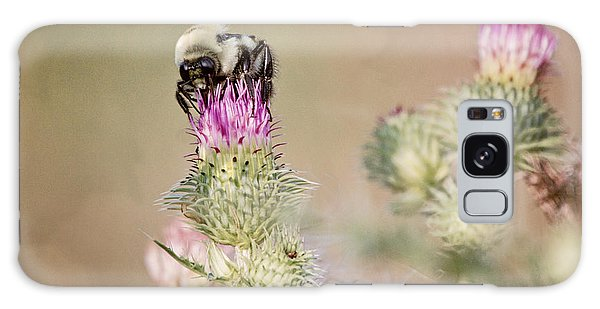 Bee On Thistle Weed Galaxy Case by Laurinda Bowling