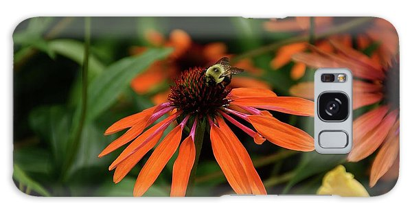 Bee Pollinating On A Cone Flower Galaxy Case