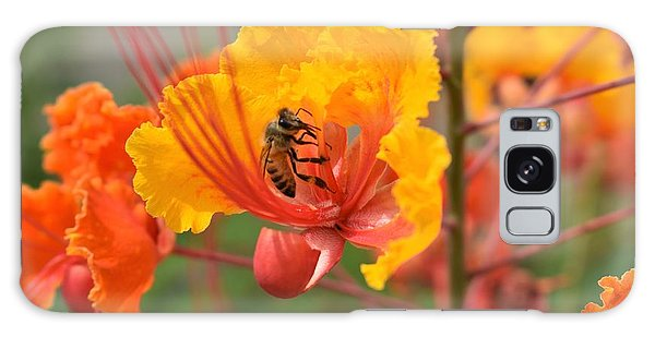 Bee Pollinating Bird Of Paradise Galaxy Case
