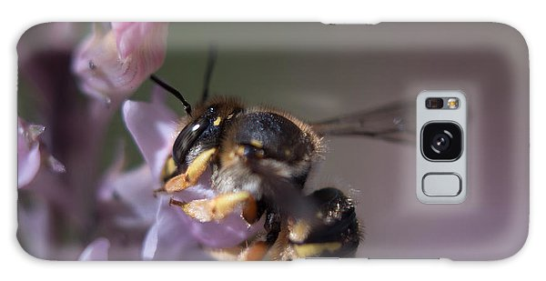 Bee Sipping Nectar Galaxy Case