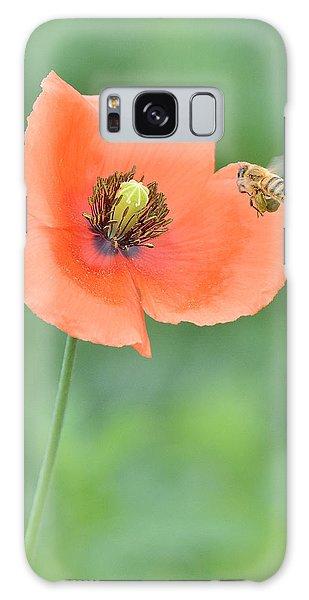 Bee To Poppy Galaxy Case by Alan Lenk