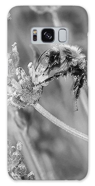 Bee Works Lavender Galaxy Case by Len Romanick
