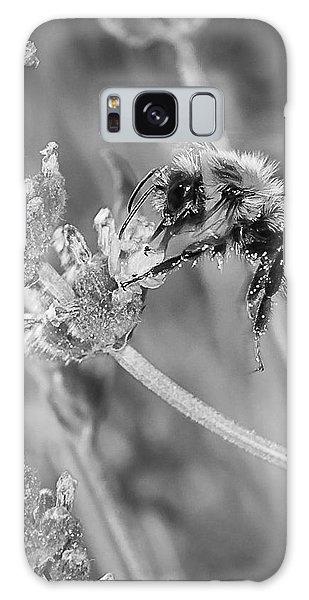 Bee Works Lavender Galaxy Case