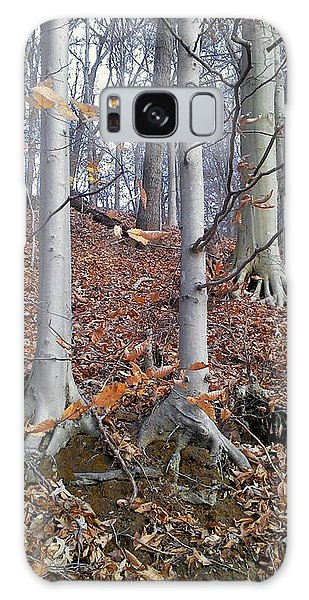 Beech Trees Galaxy Case