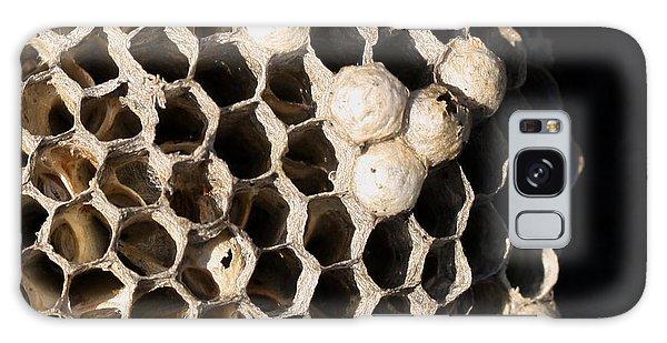 Bee's Nest Galaxy Case