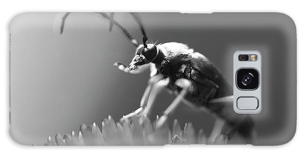 Beetle In Black And White Galaxy Case
