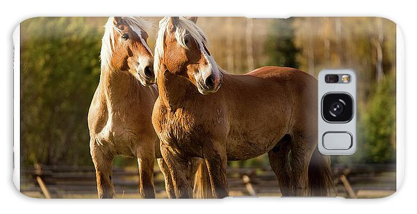 Belgian Draft Horses Galaxy Case