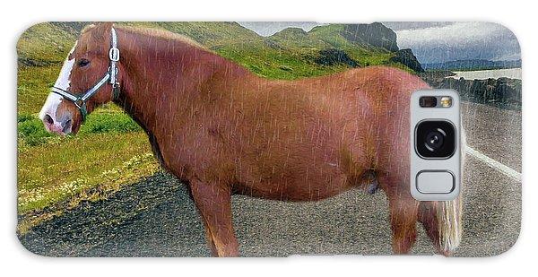 Belgian Horse Galaxy Case