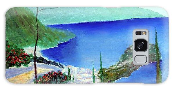 Bella Monaco  Galaxy Case by Larry Cirigliano