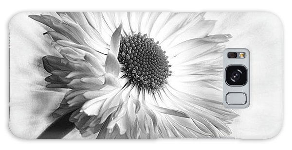 Beautiful Galaxy Case - Bellis In Mono  #flower #flowers by John Edwards