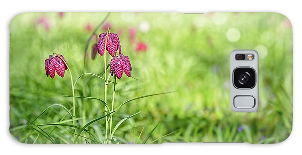 Grass Snake Galaxy Case - Bells by Delphimages Photo Creations