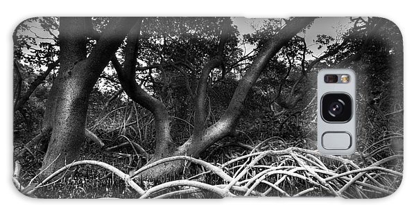 Mangrove Galaxy Case - Below The Canopy by Marvin Spates