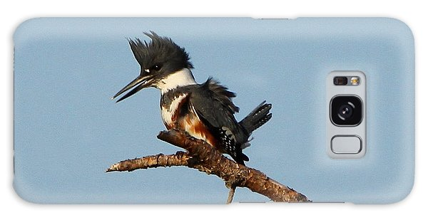 Belted Kingfisher  Galaxy Case by Barbara Bowen