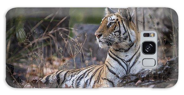 Bengal Tiger Galaxy Case