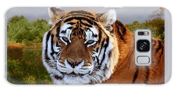 Bengal Tiger Portrait Galaxy Case