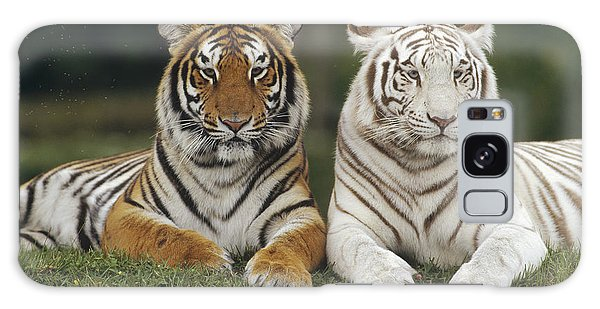 Galaxy Case featuring the photograph Bengal Tiger Team by Konrad Wothe