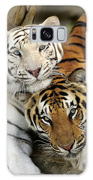 Bengal Tigers At Play Galaxy Case