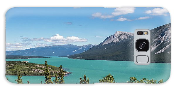 Tagish Lake Galaxy Case