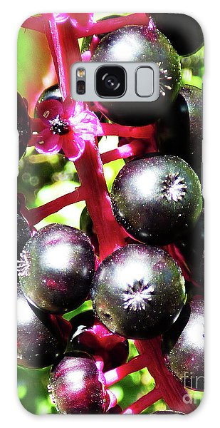 Wild Purple Pokeweed Berries  Galaxy Case