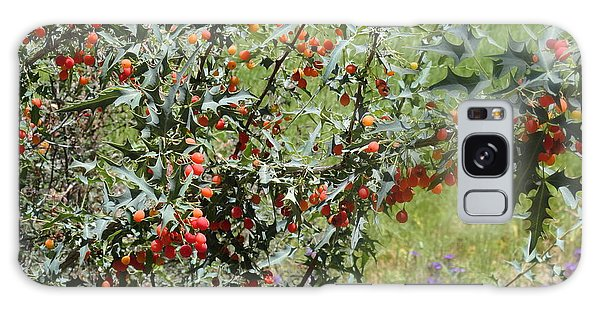 Berries On The Vine Galaxy Case