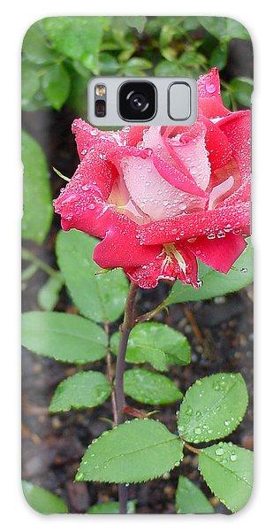 Bi-colored Rose In Rain Galaxy Case
