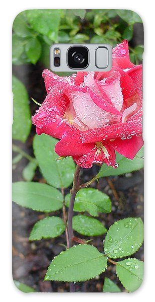 Bi-colored Rose In Rain Galaxy Case
