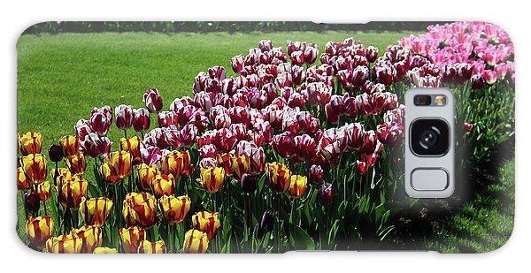 Multicolor Tulips Galaxy Case