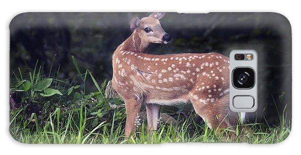 Big Bambi Galaxy Case