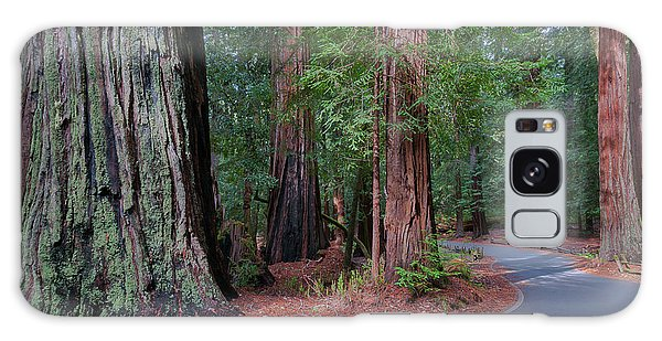 Big Basin Redwoods Galaxy Case
