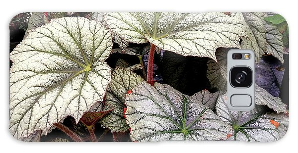 Big Begonia Leaves Galaxy Case by Nareeta Martin